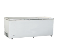 09SL 大容量商用冷柜