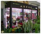 09YG 韩式鲜花保鲜柜