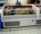 09E8 冷冻冷藏柜