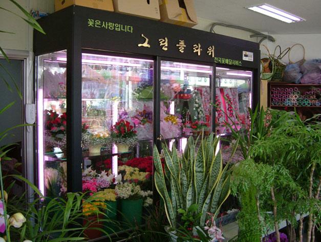 09YG 韩式鲜花保鲜柜.jpg